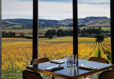 North Canterbury Foraging & Wine Tour NZ