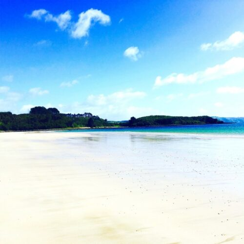 Bay of Islands Paddleboarding Adventure for Two